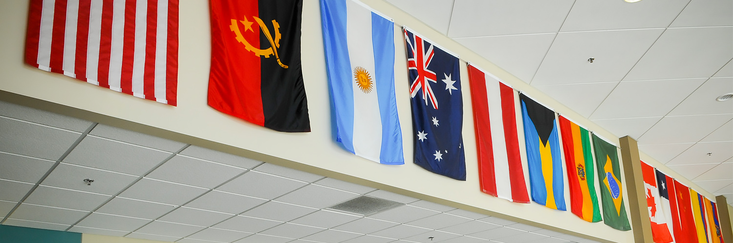 Flags in the lunch hall representing our international students